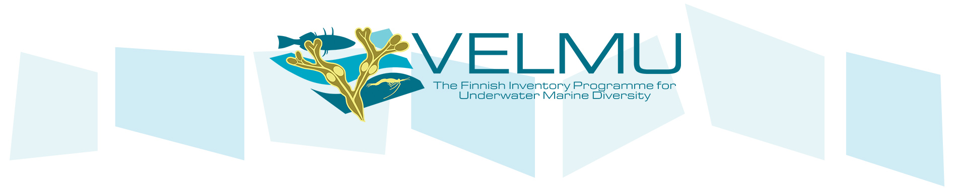 The Finnish inventory programme for the underwater marine environment